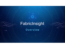FabricInsight: Overview