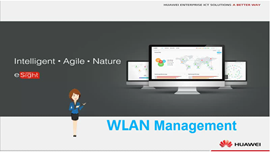 eSight WLAN Management